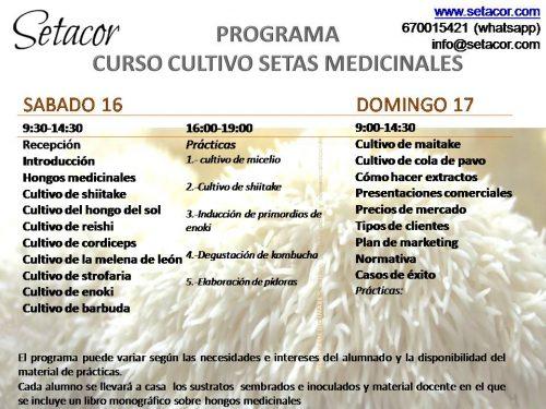 programa_curso_setas_medicinales