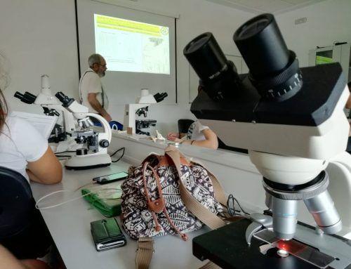Curso de identificación de hongos con microscopio