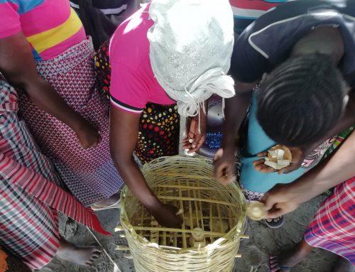 Setas en Mozambique