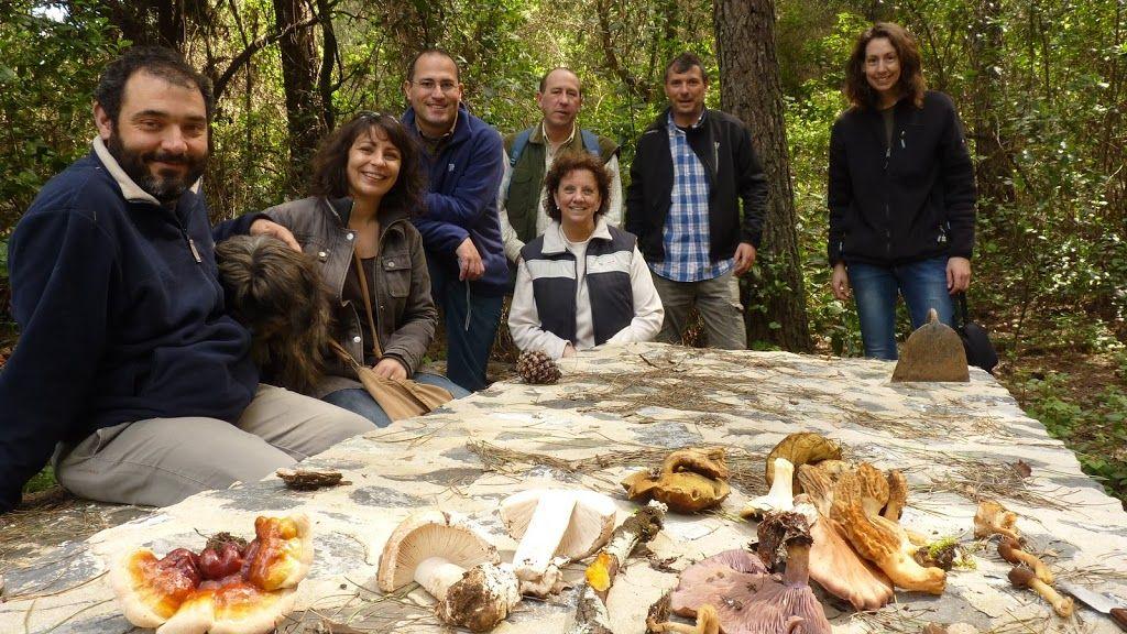Ruta micológica en Sierra Morena