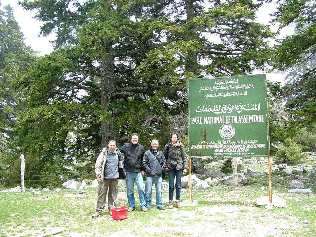 Recolección cientifica de hongos en Marruecos