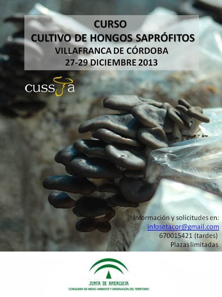 CURSO GRATUITO DE CULTIVO DE HONGOS