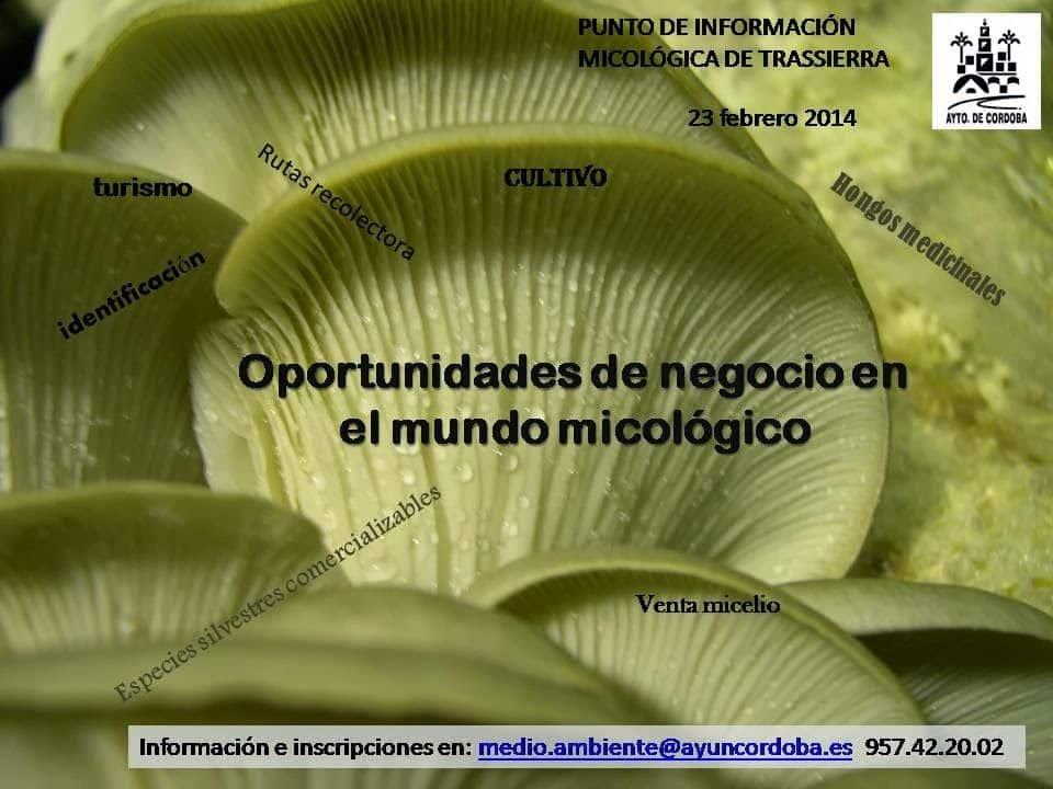 """Conferencia """"OPORTUNIDADES DE NEGOCIO EN EL MUNDO MICOLÓGICO"""""""
