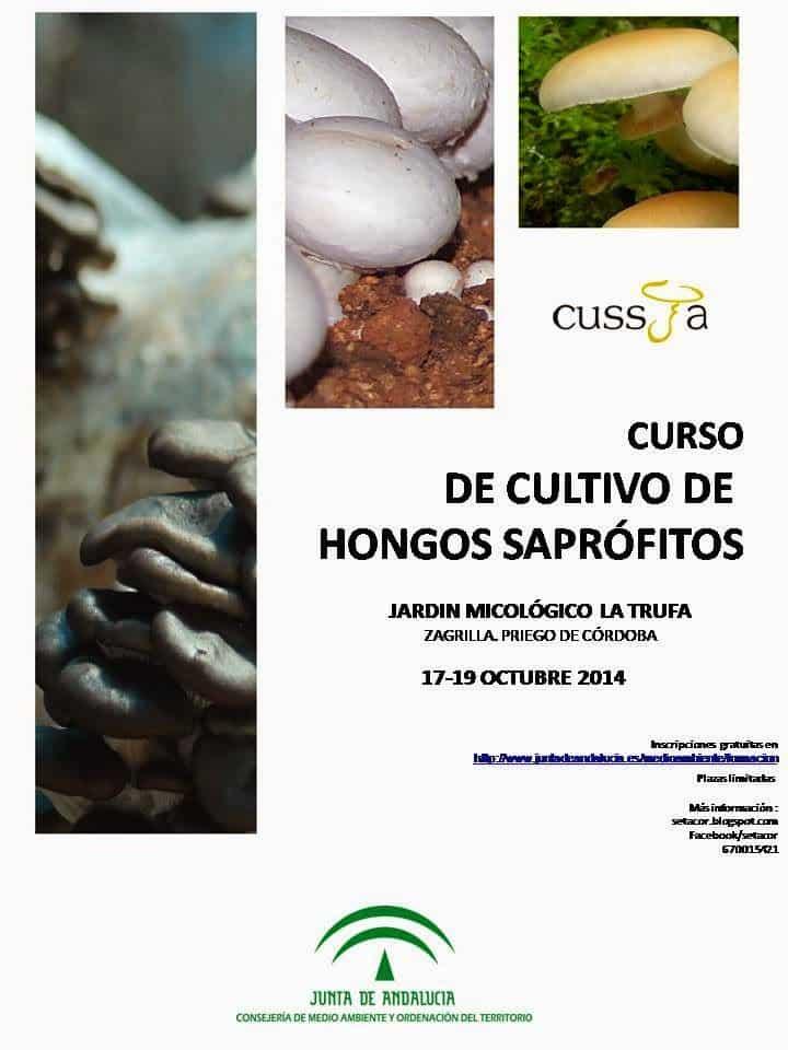 Curso gratuito de cultivo de hongos en el Jardín Micológico de Priego
