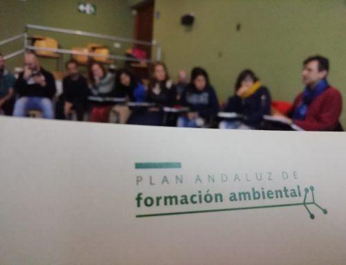 Educación Ambiental en Micología