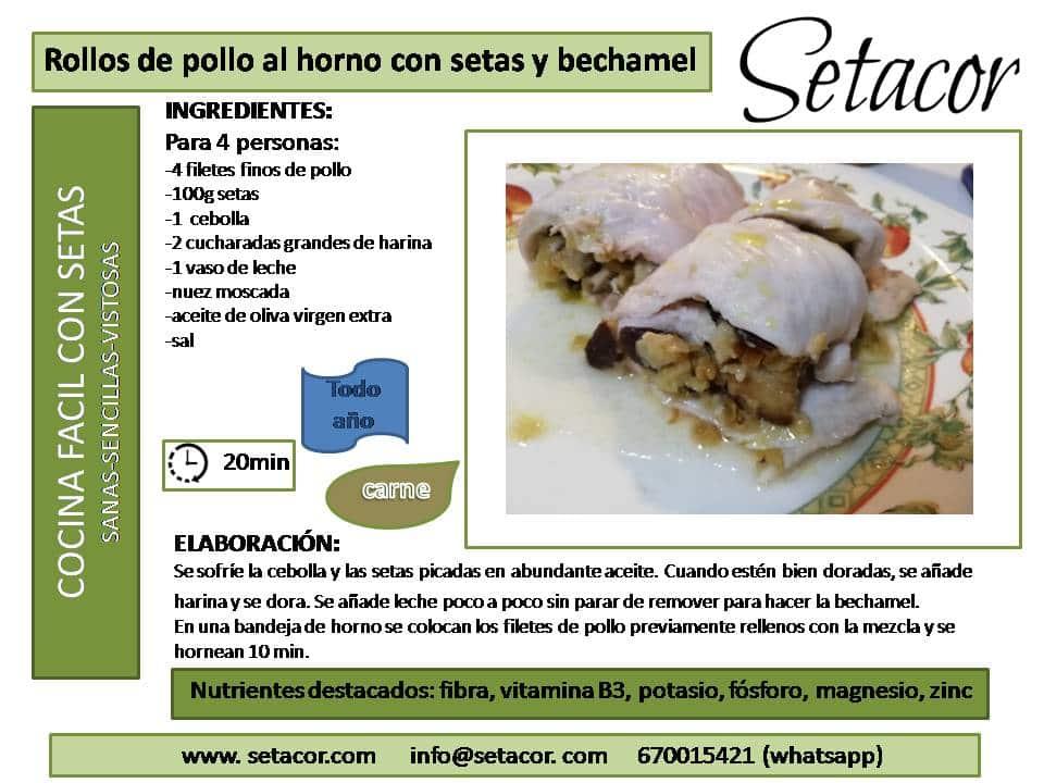 rollos_pollo_setas_setacor