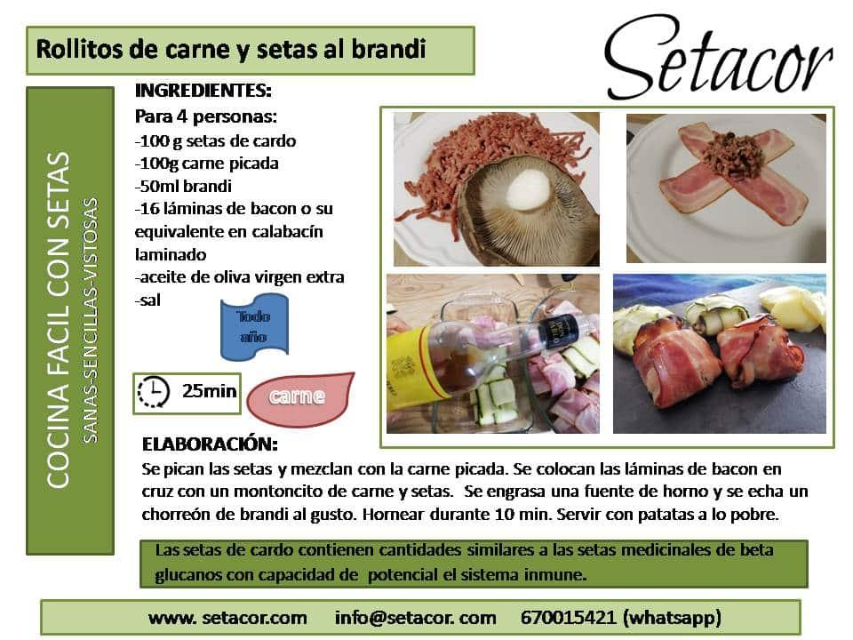 rollitos_de_carne_y_setas_al_brandi_setacor