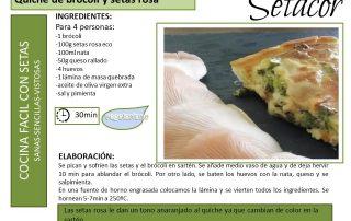 QUICHE-BROCOLI_SETAS_SETACOR